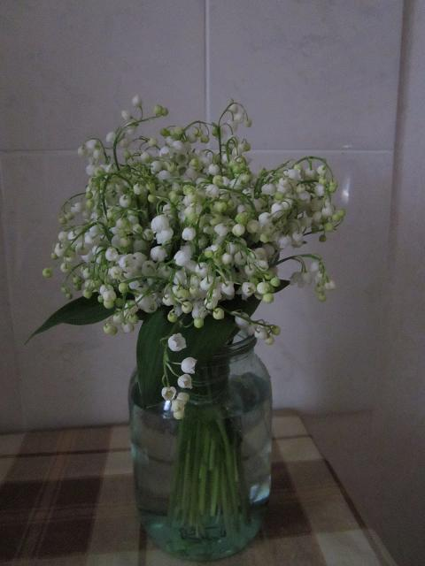 lilies of he valley bouquet