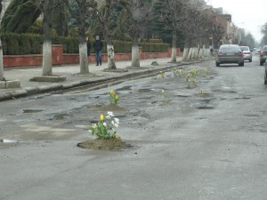 (The town of Коломия) Potholes blossom like wild flower.