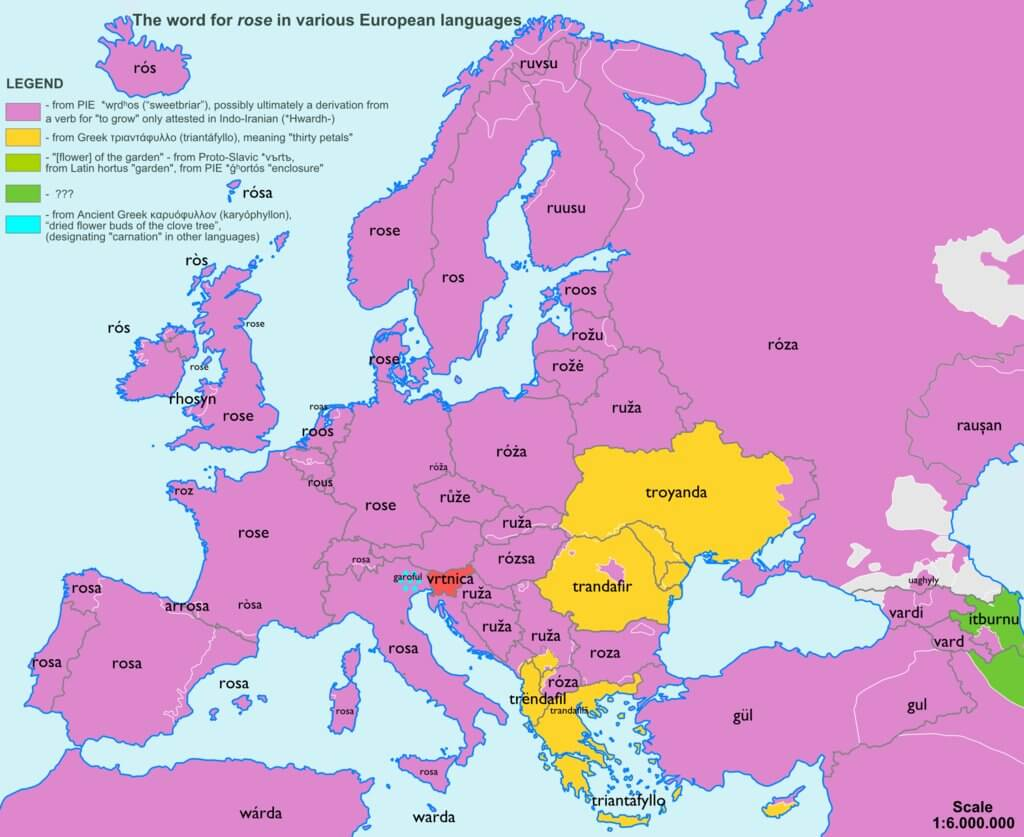 Rose-Europe-etymology