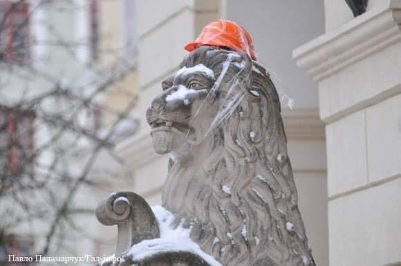 Lion-in-protests-helmet