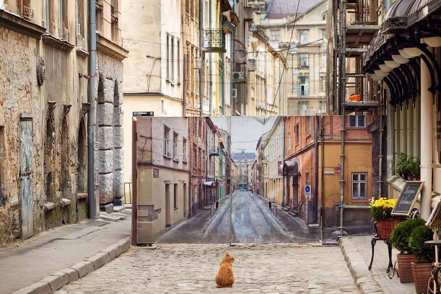 Lviv-picture-Cat-street